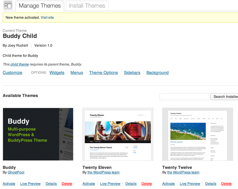 Buddy Child WordPress Theme