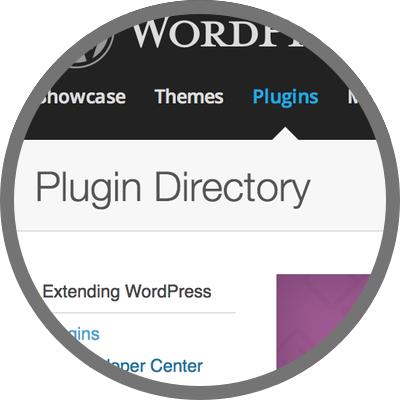 WordPress plugin reviews
